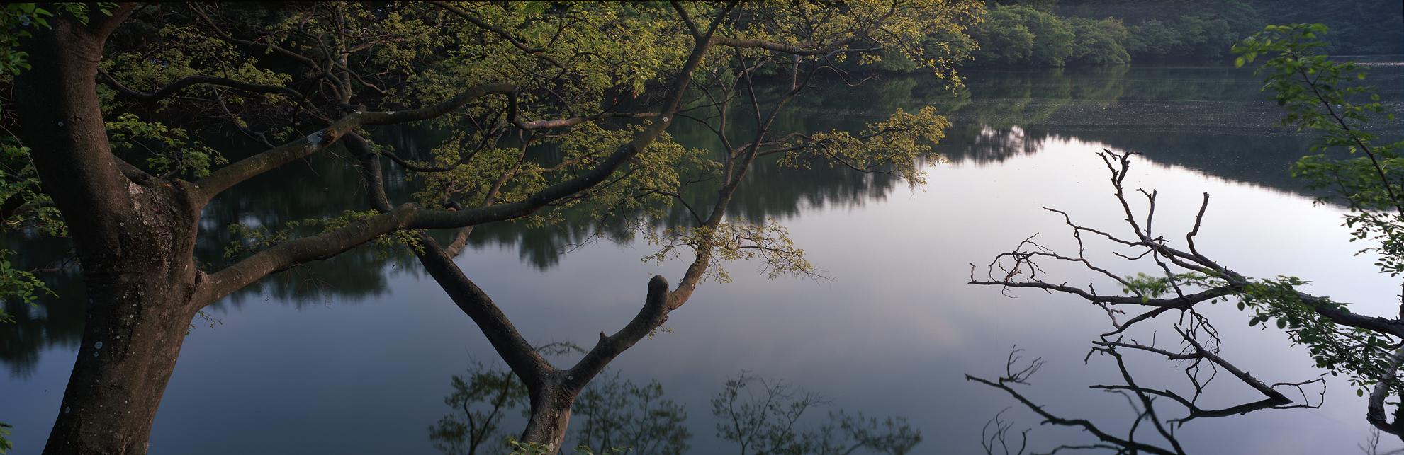 wiryangji003.jpg